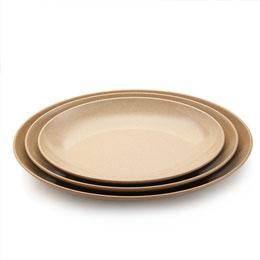 天然稻壳餐盘